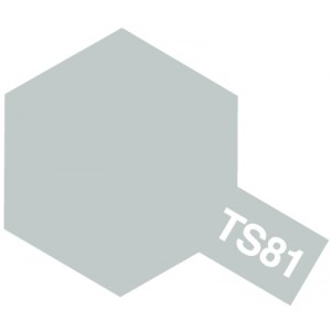 TS-81 royal light gray