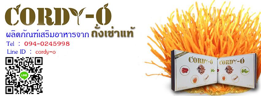 ถั่งเช่าเกรดพรีเมี่ยม Cordy-O ผลิตภัณฑ์เสริมอาหารจากถั่งเช่าสีทองแท้ เห็ดหลินจือ ใบแปะก๊วย โสมเกาหลี
