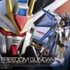 (มี1รอเมลฉบับที่2 ยืนยันก่อนโอน )85139 RG 14 1/144 ZGMF-X20A Strike Freedom Gundam 3000yen